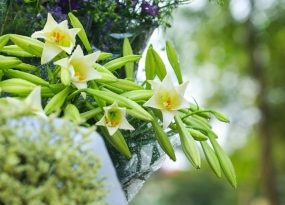 Mơ thấy hoa loa kèn phù hợp với con số may mắn